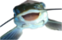 :happyfish: