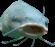 :surprisefish: